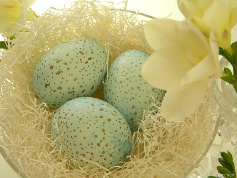 Speckled Eggs by Homework | Vin'yet Etc.