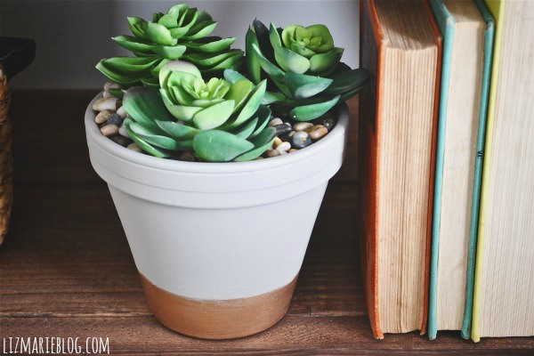 DIY Succulent Planter | Vin'yet Etc.