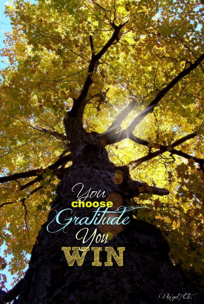 You Choose | Vin'yet Etc.