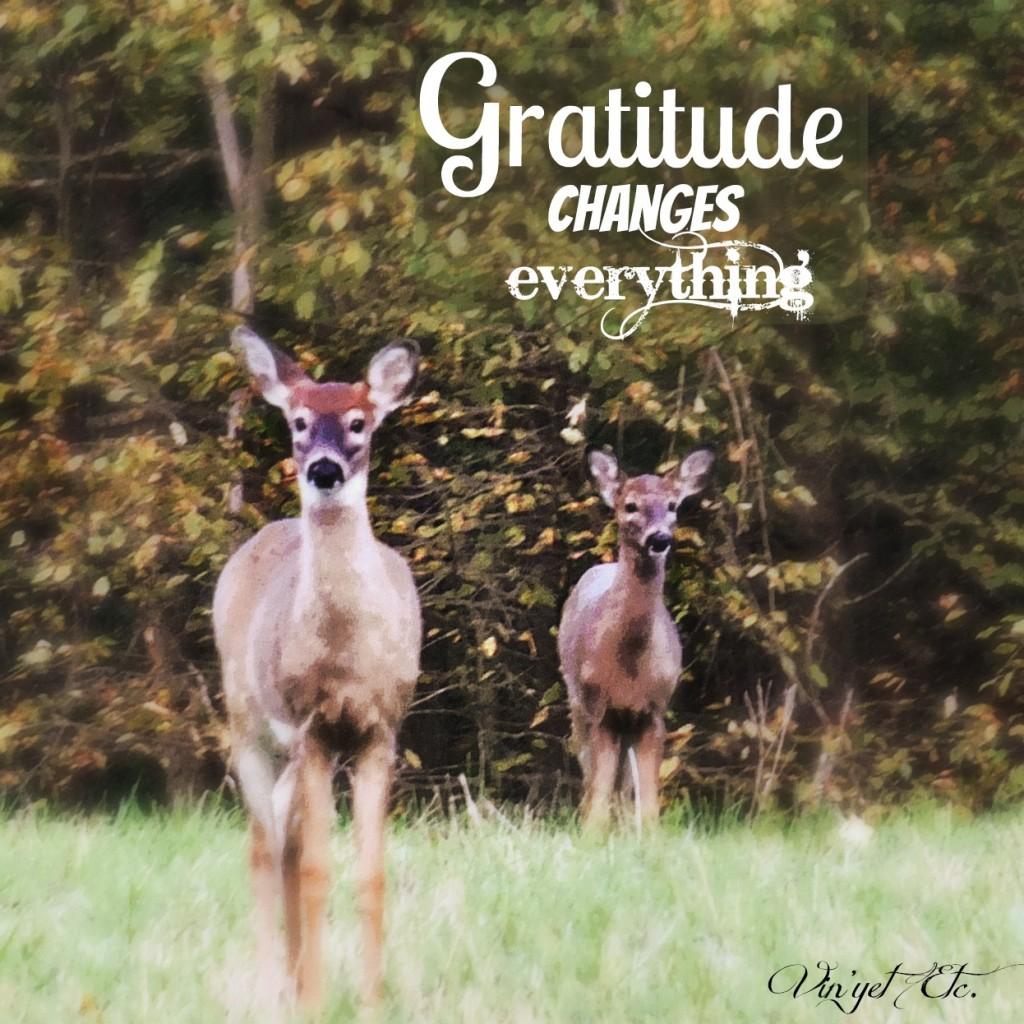 GratitudeChangesEveything | Vin'yet Etc.