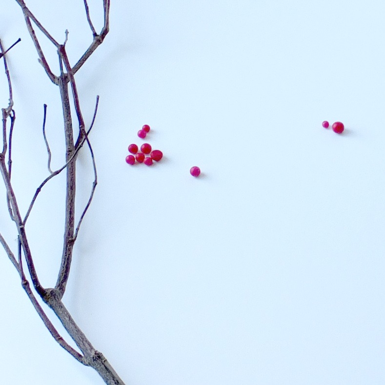 DIY_Winterberry_Branches | Vin'yet Etc.