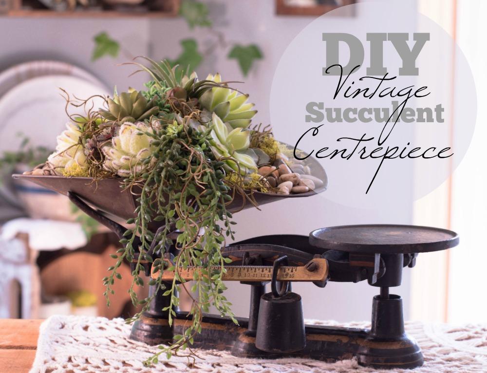 diy-vintage-succulent-centrepiece-3a