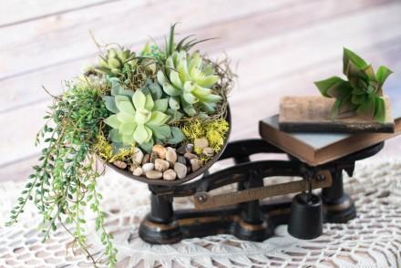 DIY Vintage Succulent Centrepiece | VinYet ETC