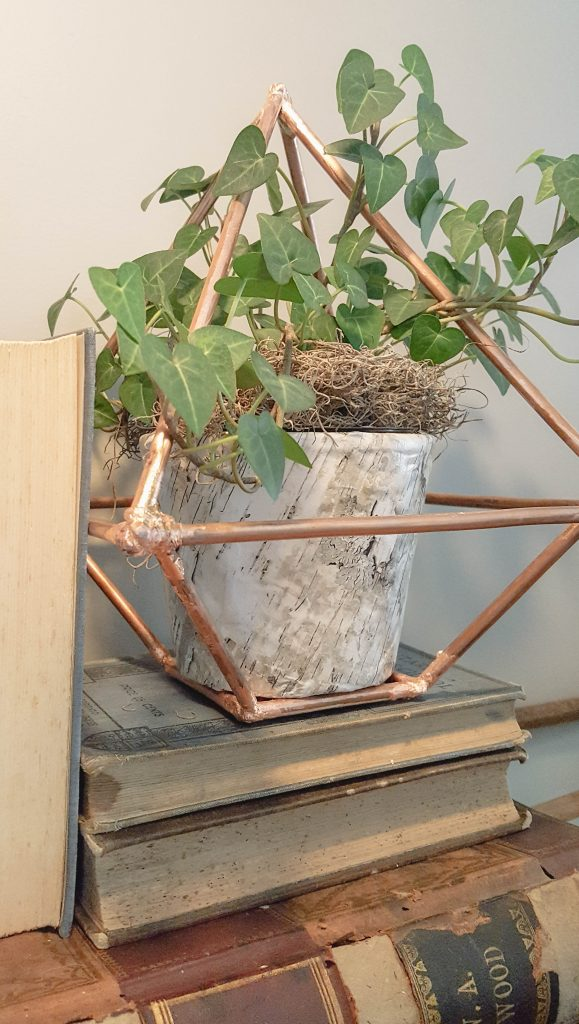 DIY copper terrarium | VinYet Etc