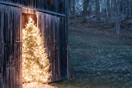 That Christmas feeling - a cozy Christmas   Vinyet Etc.