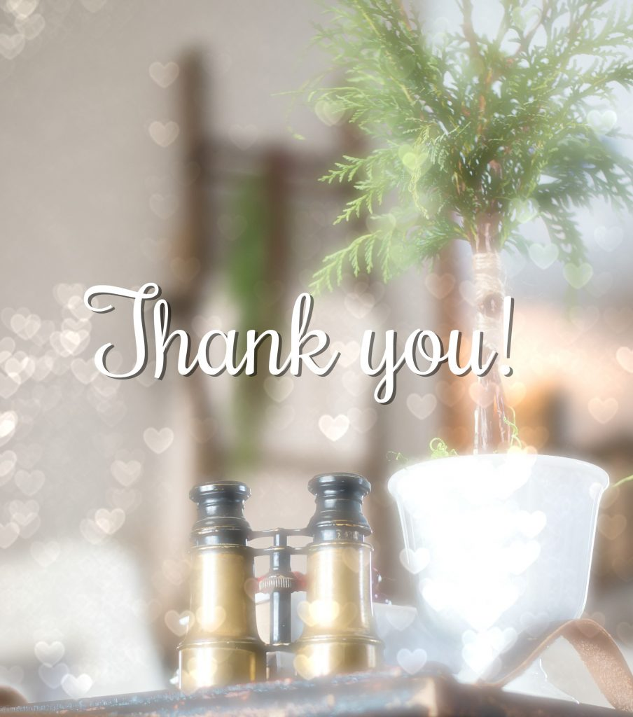 Thank you from | Vinyet Etc.