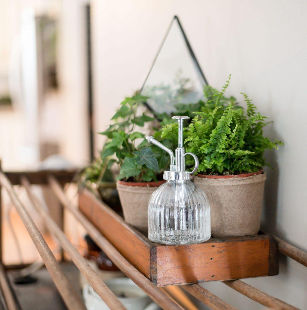 Spring Vignettes - Cozy Living - Vinyet Etc